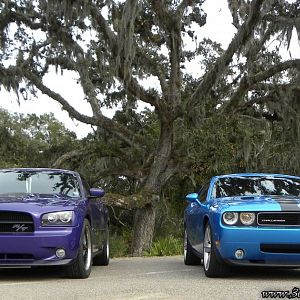 Plum and Challenger Jan 2010